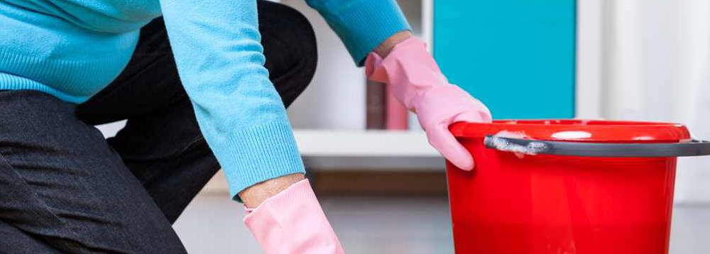 huishoudelijke_hulp